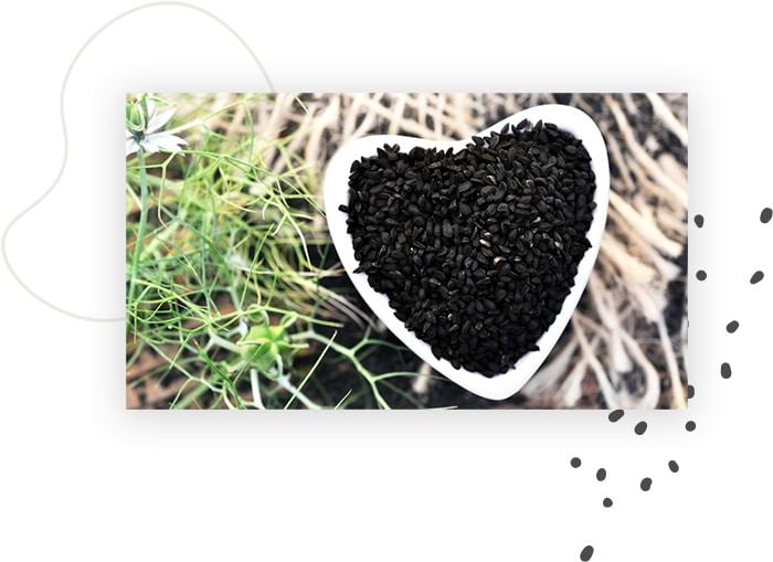 graine de cumin noir